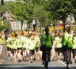Matjes-2011-Busse-066